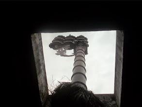 Photo: Vijay