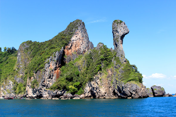 Cruise to the famous Chicken Island with its bizarre head
