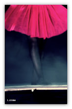 Photo: Petite Danseuse http://www.musee-orsay.fr/index.php?id=851&L=0&tx_commentaire_pi1%5BshowUid%5D=171&no_cache=1