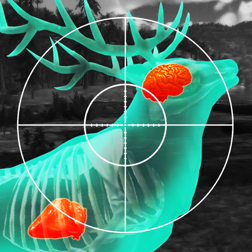 Wild Hunt:Sport Hunting Games. Hunter & Shooter 3D (game)
