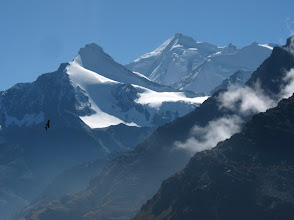 Photo: Above us, a crow harrasses a hawk or eagle in front of the massive Weisshorn.