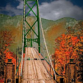 Lions Gate Bridge by Joseph Vittek - Buildings & Architecture Bridges & Suspended Structures (  )