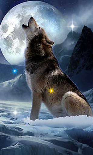 Wolf Songs HD live wallpaper