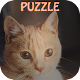 Kitty Puzzle : Cute Pets Party