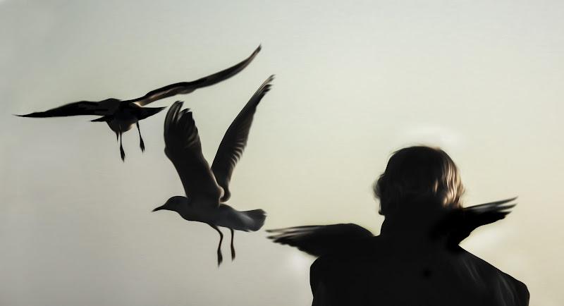 libero di volare ( basta crederci) di micol57