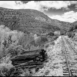 Verde Canyon by Dave Lipchen - Black & White Landscapes ( verde canyon )