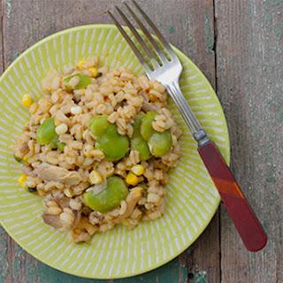 Fava Bean Vegan Recipes.