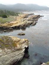 Photo: Point Lobos