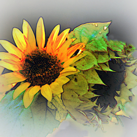 Sunflower Reflections by Teresa Wooles - Digital Art Things