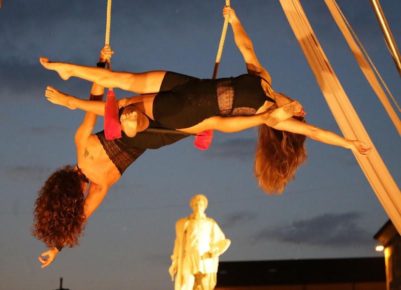 acrobazie opposte di galli59