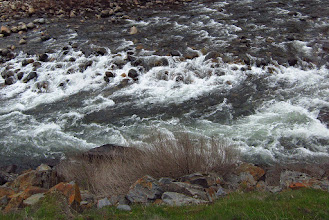 Photo: Scene from bus. Merced River. #3836crop