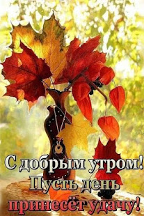 Pictures - Good morning! - náhled