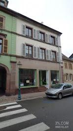 locaux professionels à Sainte-Marie-aux-Mines (68)