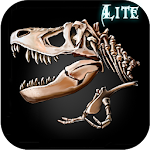 The Lost Lands:DH Lite 1.01 Apk