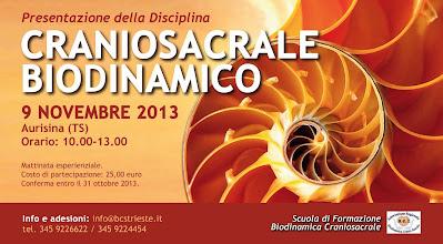 Foto: Presentazione Craniosacrale biodinamico 9 novembre 2013 ad Aurisina
