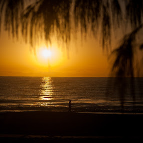 by Mark Luyt - Landscapes Sunsets & Sunrises ( orange, sunrise, golden hour,  )