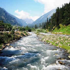 STREAM by Ajit Kumar Majhi - Landscapes Waterscapes (  )