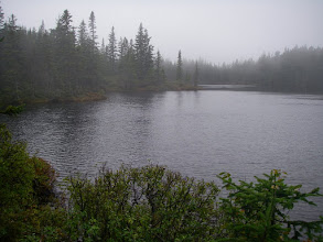 Photo: A foggy Unknown Pond. We had hoped to see a moose here but had no such luck.