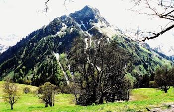 Blick von der Schwarzenberghütte zum Giebel Hindelang Allgäu