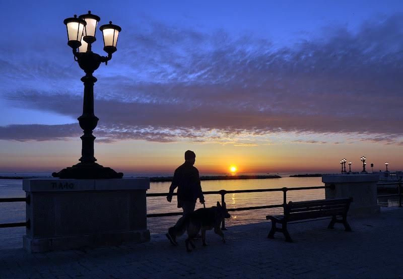 La mattina col cane di Diana Cimino Cocco
