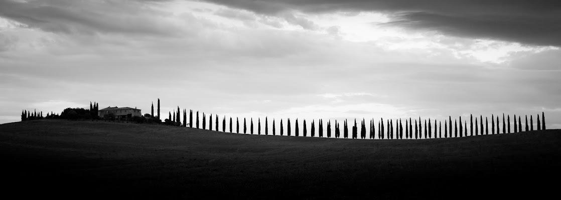 PoggioCovili in silhouette  di Nico Angeli Photography