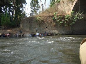 Photo: The women wash on the river's edge despite crocodiles