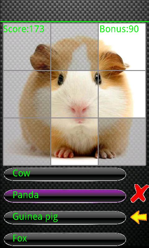 Скриншот The Animal Quiz