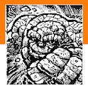 Picross/Nonogram Picture No.3 icon