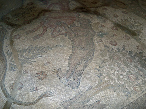 Photo: Apamea, one of the mosaics at the museum .......... Een van de mozaieken die in Apamea gevonden zijn