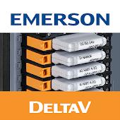 DeltaV CHARMs LED Diagnostics.