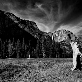 The Falls of Yosemite by Trey Amick - Landscapes Mountains & Hills ( waterfalls, 10-24mm, monochrome, black and white, waterfall, xt-1, hiking, blackandwhite, monochromatic, tree, yosemite, trail, fuji, yosemite national park, dead, ynp )