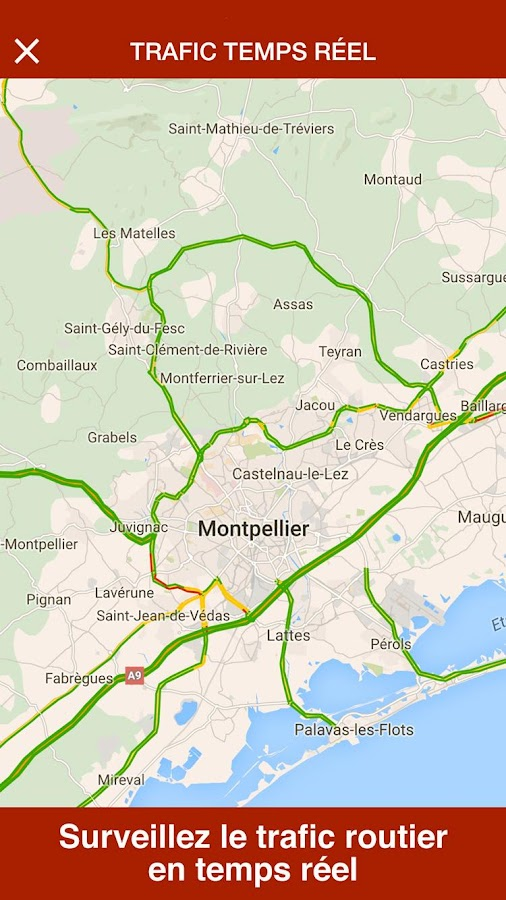 Montpellier Live- screenshot