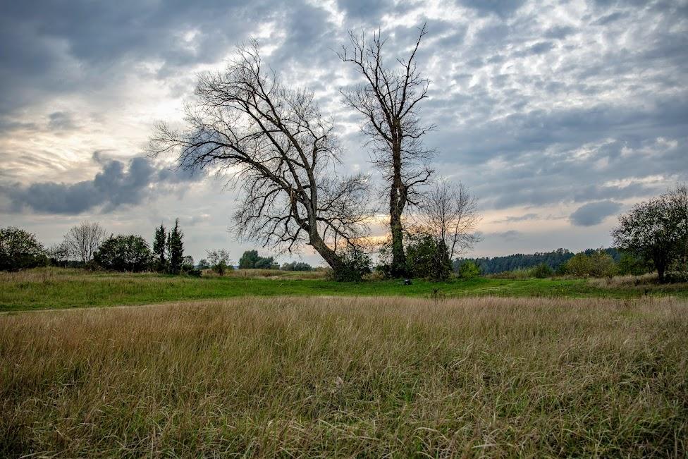 krajobraz, weekend na Mazowszu