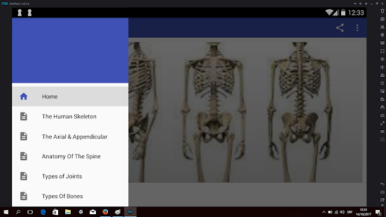 The Skeleton & Bones - náhled