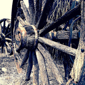 Day 212 by Todd Reynolds - Transportation Other ( country, rustic, rural, old, backroads, barn, silo, farm, crops, family,  )