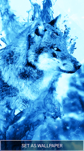 Download Ice Fire Wolf Wallpaper on PC