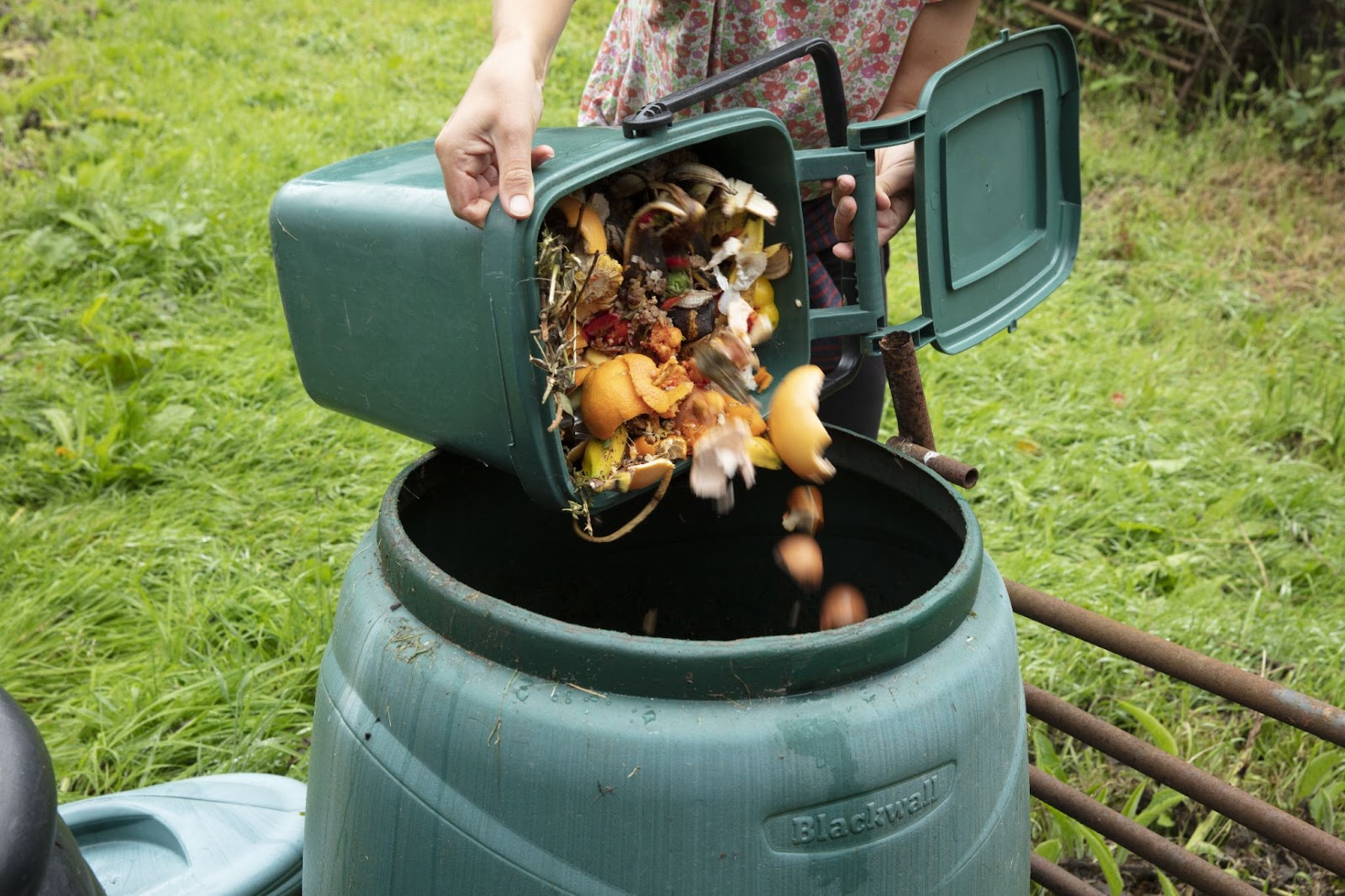 Image of food scabs being dumped into a compost bin.
