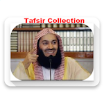 Mufti Menk collection icon