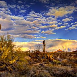 by DE Grabenstein - Landscapes Deserts