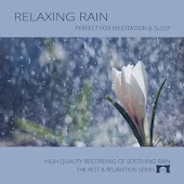 Relaxing Rain: Perfect for Meditation & Sleep