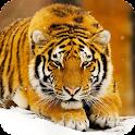 Big Cats Wallpaper icon