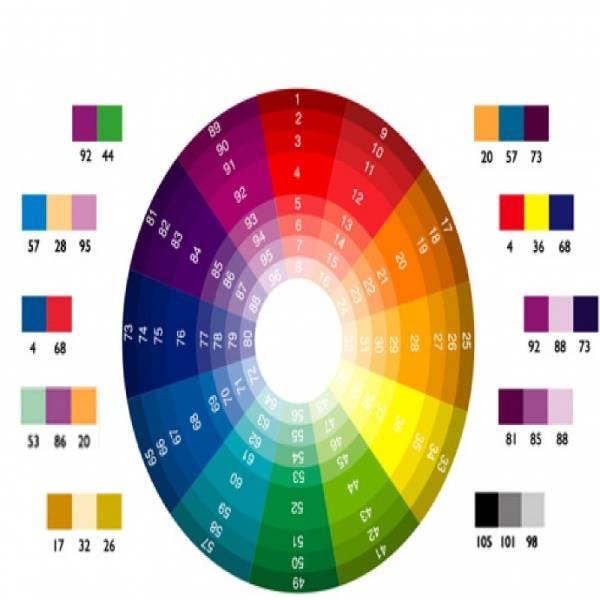 Tham khảo cách thức phối màu sơn hài hoà trên sách báo, mạng internet