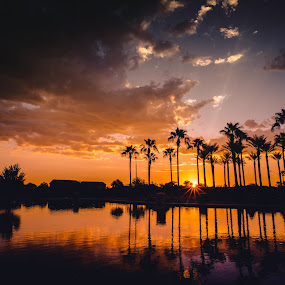 Maricopa Sunrise by Bryan Snider - Landscapes Sunsets & Sunrises ( water, clouds, reflection, sky, color, arizona, maricopa, palm trees, sunrise, phoenix, pond )