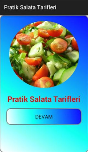 Pratik Salata Tarifleri for PC
