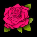 Roses <b>New</b> Tab - <b>Full HD</b> Wallpaper