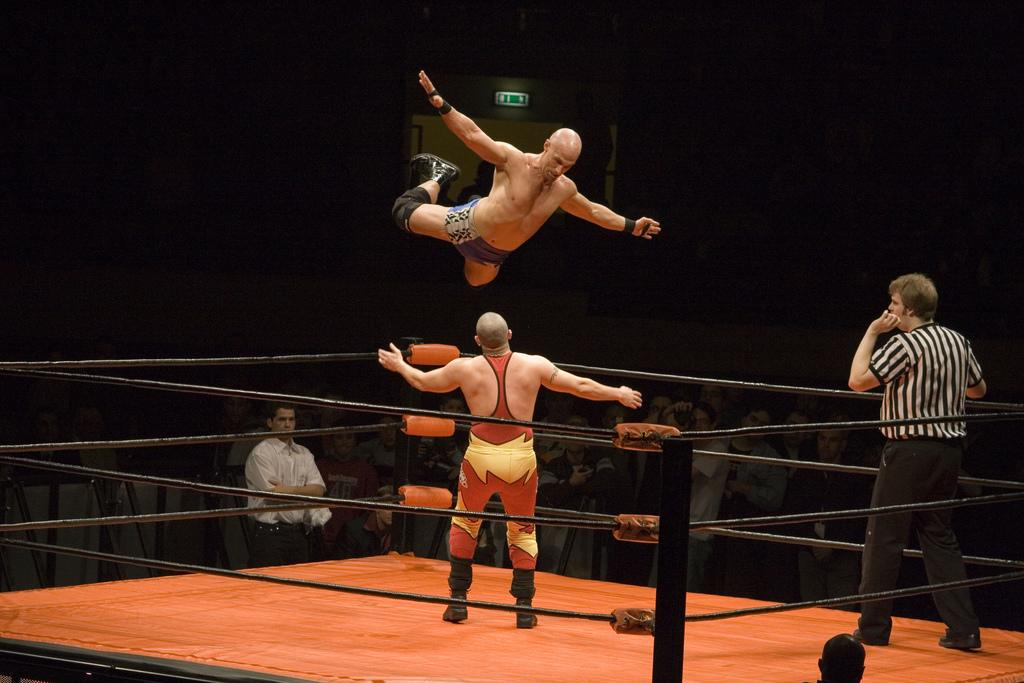 Wrestling training- screenshot