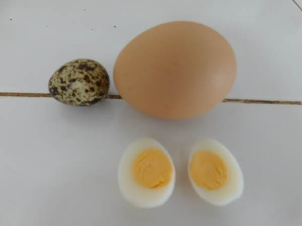 Perfect Hard Boiled Quail Eggs Recipe
