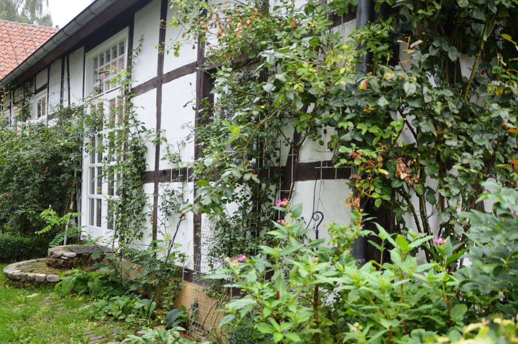 B and B Rosindell Cottage
