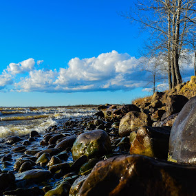 Sunny Shore by Marc-Andre Grenier - Landscapes Waterscapes ( shore, blue sky, sunny, waves, rocks, river )