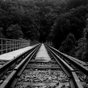 To Infinity by Dhruva Chandramouli - Landscapes Travel ( railway, traintracks, bridge )